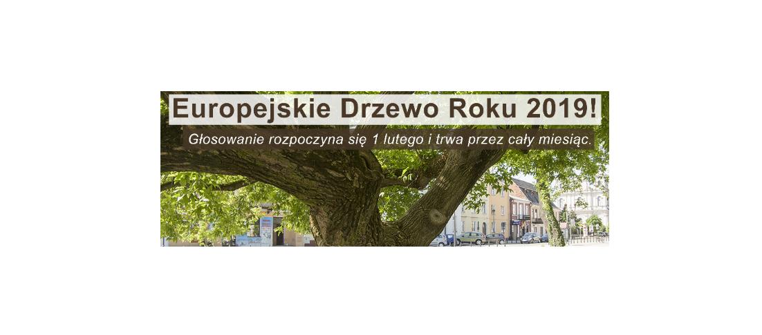 EUROPEJSKIE DRZEWO ROKU 2019